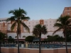 hollywood-beach-resort-palm-trees-by-pool
